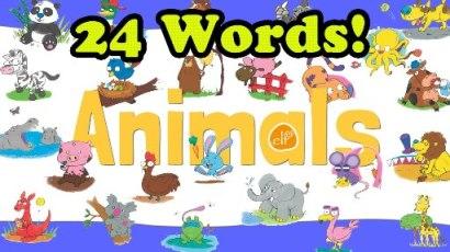 คำศัพท์สัตว์ภาษาอังกฤษสำหรับเด็ก